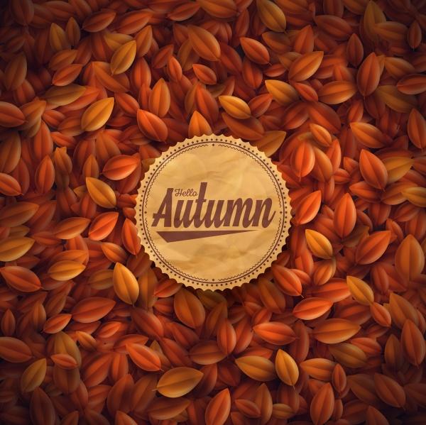 Autumn 7 | Осень 7 (51 файлов)