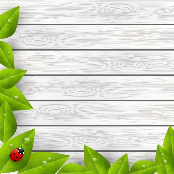Органические фоны | Organic backgrounds (10 файлов)