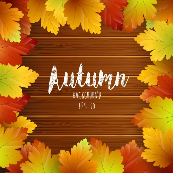 Autumn vector card, colorful autumn leaves background (14 файлов)