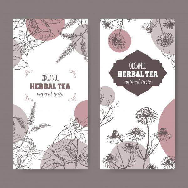 Vintage Flowers Cards Vector 3